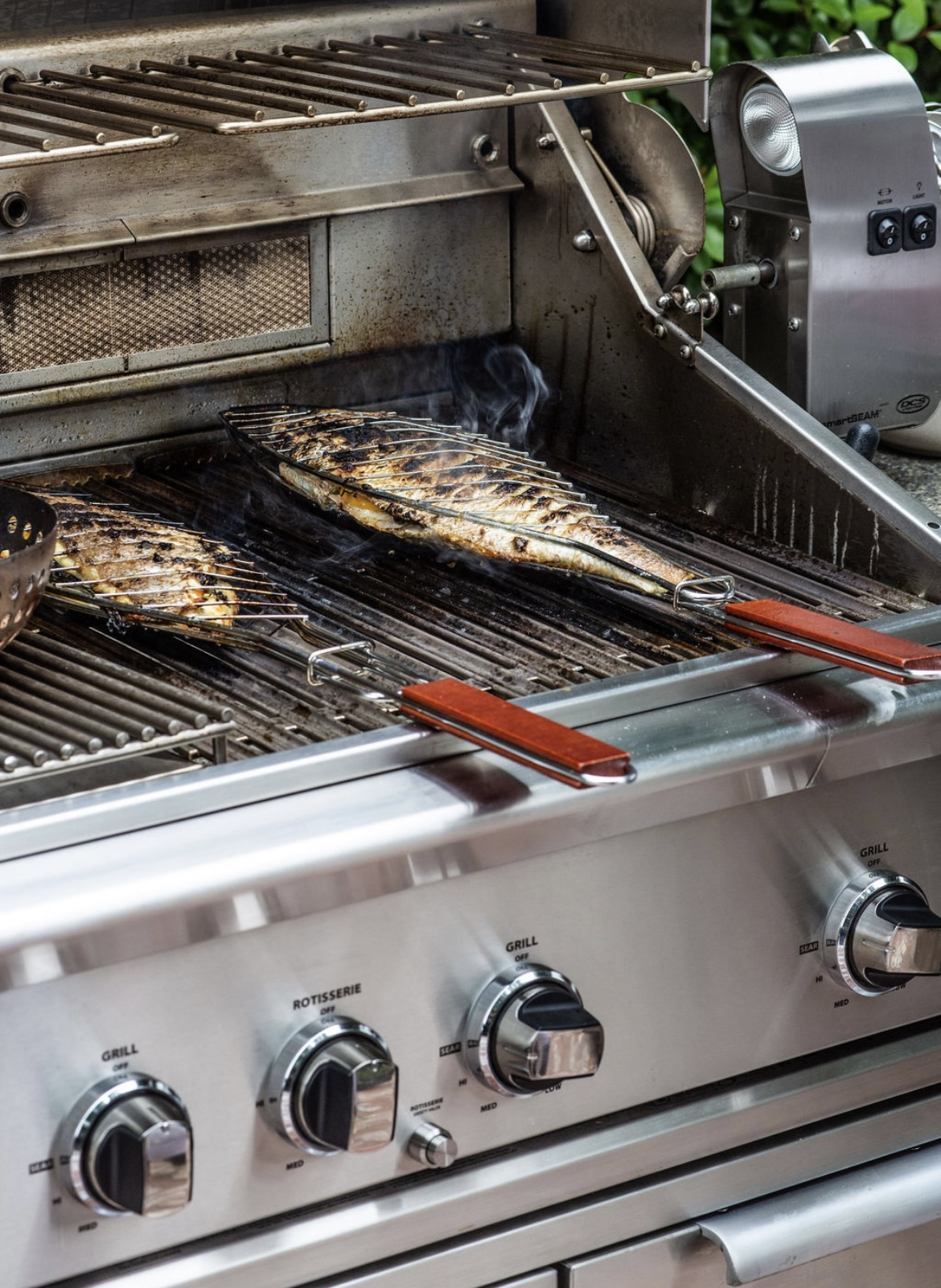 Grilled Fish and Garlic Sauce